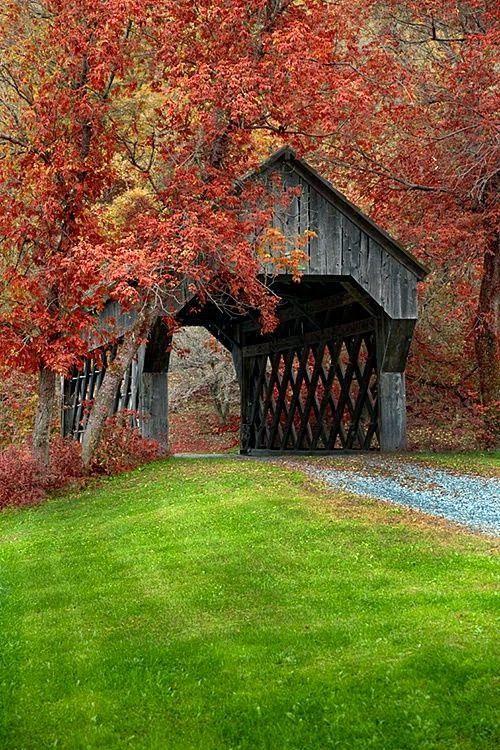 Covered Bridge Near Chelsea, Vermont - Favorite Photoz #autumnscenes