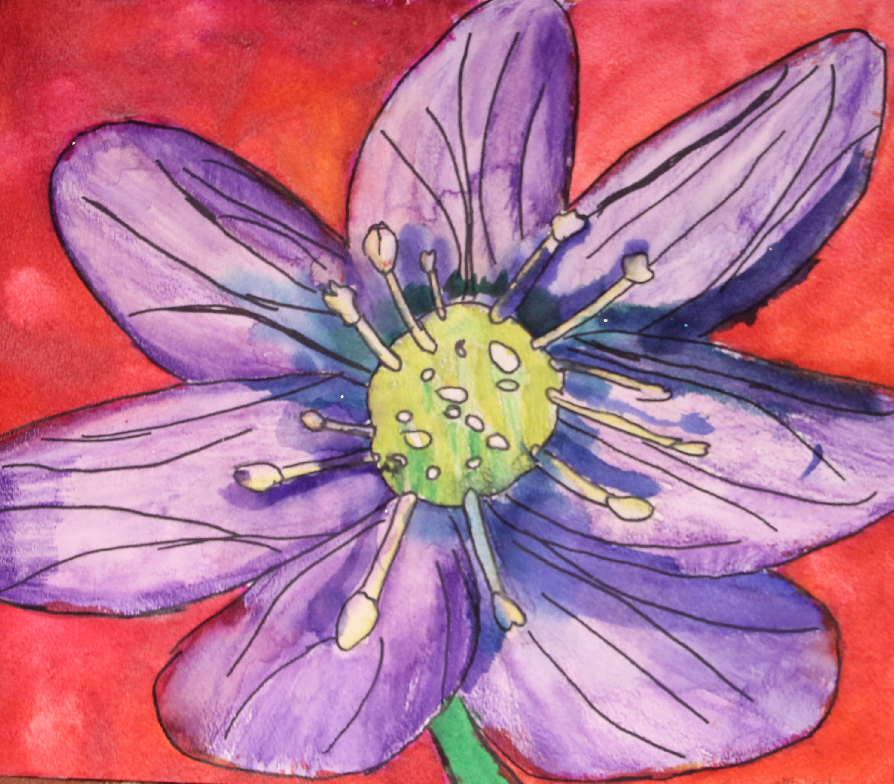 Botany Flowers Painting Details Watercolor Oil Pastel 3rd