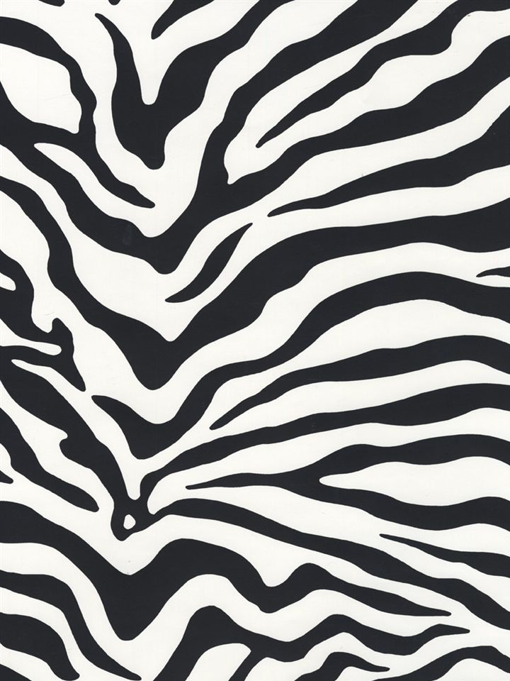 Kd1798rb Wallpaper Risky Business Americanblinds Com Zebra Wallpaper Black And White Wallpaper Wallpaper Black and white wallpaper zebra