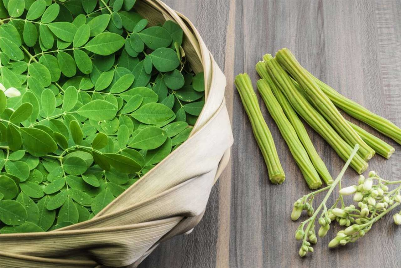 Drumstick Stick Leaves Are A Rich Source Of Vitamins When You Include Drumstick Leaves Drumstick Drumsti Natural Health Supplements Moringa Benefits Moringa