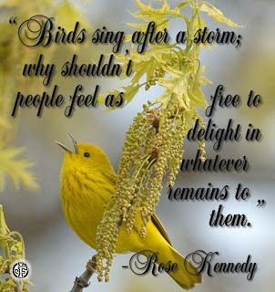 """""""Birds sing after a storm; why shouldn't people feel as free to delight in whatever remains to them."""" --Rose Kennedy"""