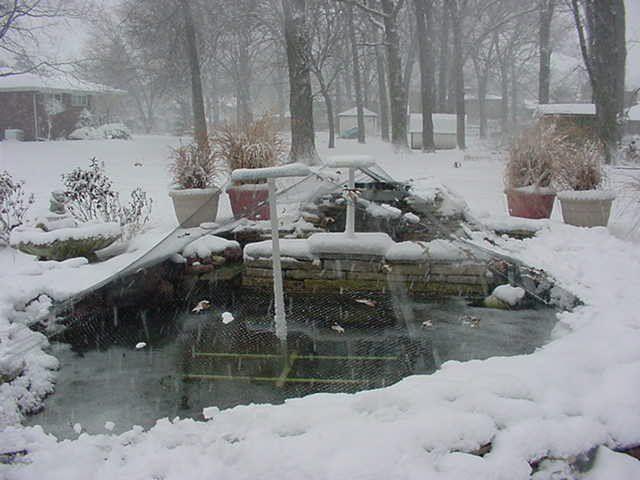 Koi Ponds The Pond In A Winter Snow Storm Koi Pond Winter Lawn Ponds Backyard