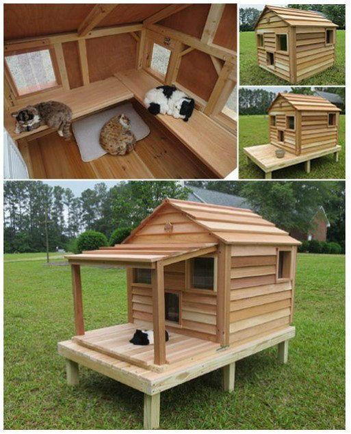 Caseta de cedar gatos pinterest casas para perros for Casetas para perros aki