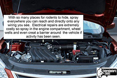 35d2785c8713f02a73bbcb2817bf9426 - How To Get Rid Of Mice In Car Hood
