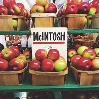 McIntosh Apples from Rogers Orchard in Southington CT