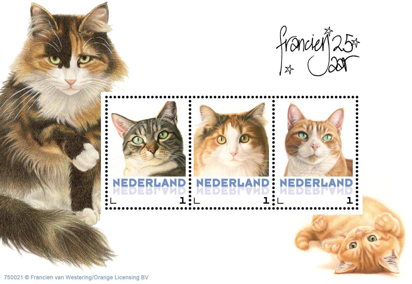 23 February 2015: Dutch Domestic Cats
