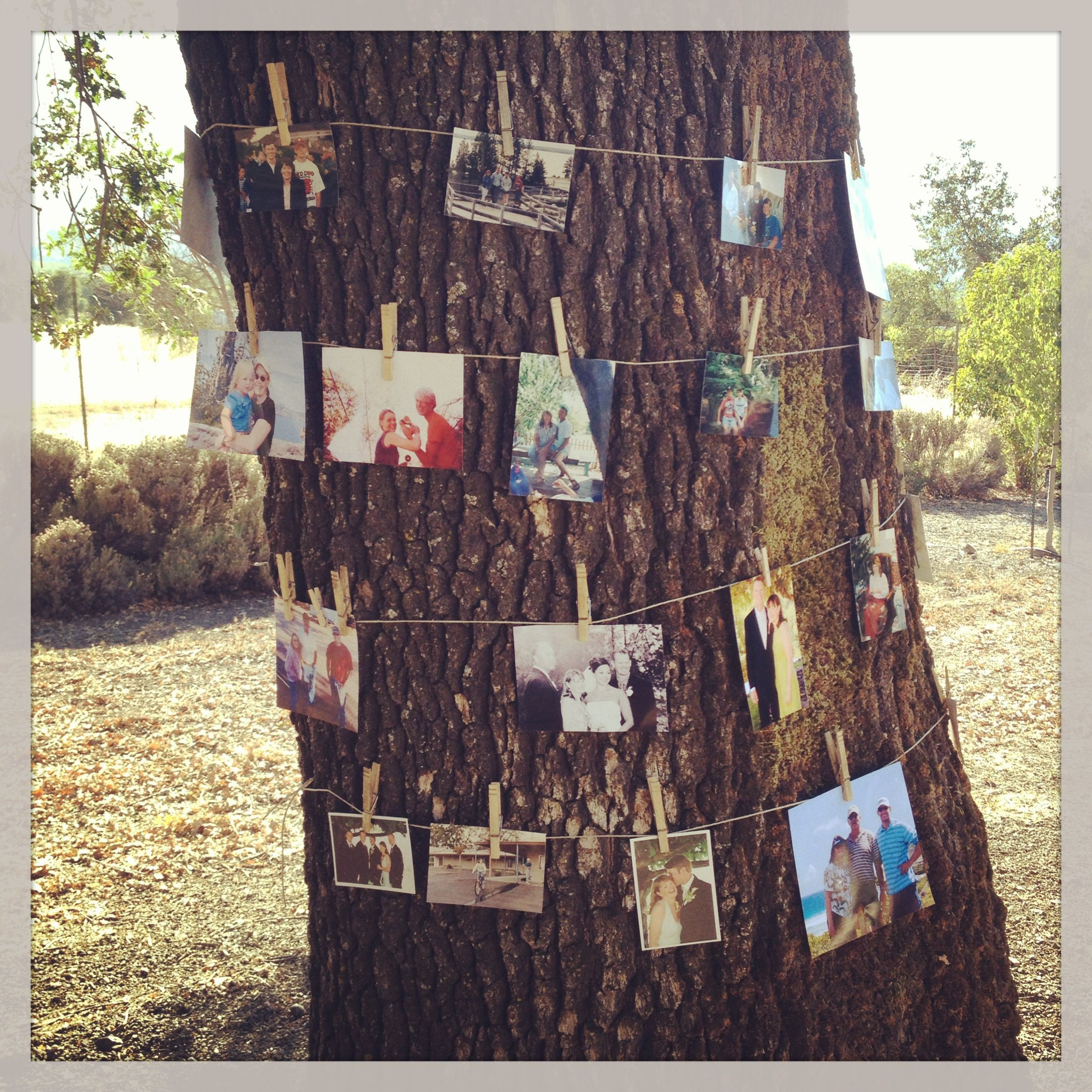 Photo memory tree. Outdoor birthday party. Need: tree, twine, pictures, small or regular sized clothes pins. Done!