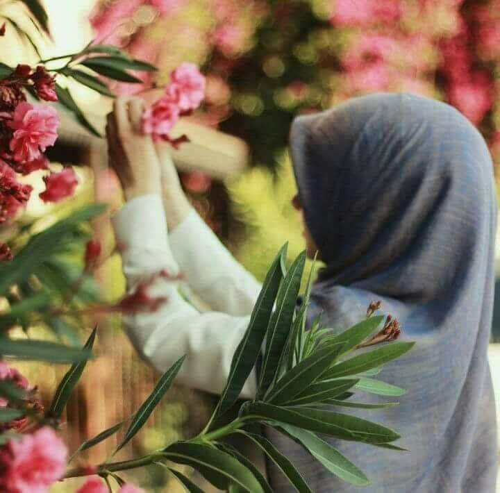 Какие цветы подарить девушке мусульманке, цветы