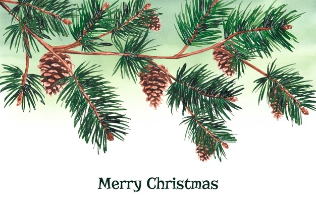 Download Watercolour Christmas Tree Branches Background For Free