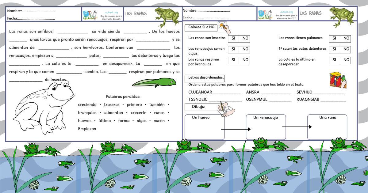 Comprensión lectora: Las ranas | ¿QUIERES APRENDER A LEER Y ESCRIBIR ...