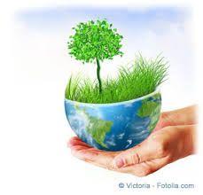 """Résultat de recherche d'images pour """"écologie"""""""
