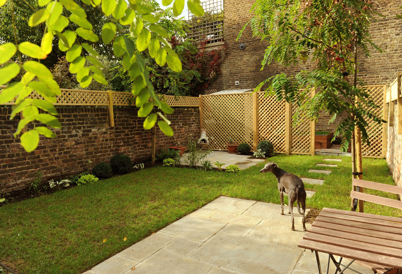 Garden Design For Dogs coucou design - small london garden, green and white planting. dog