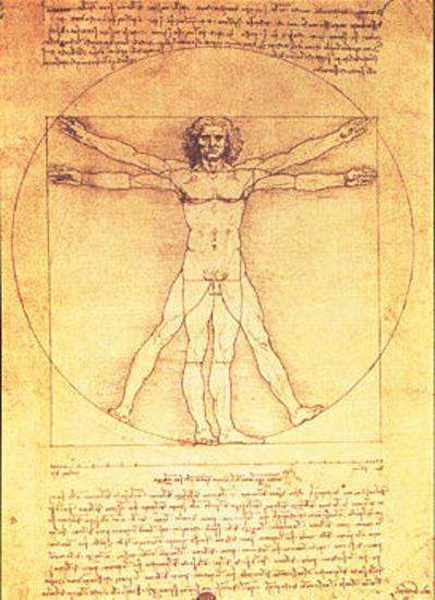 Vitruvian Man Proportions Of The Human Figure Prints Leonardo Da Vinci Allposters Com In 2021 Da Vinci Vitruvian Man Vitruvian Man Leonardo Da Vinci