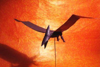 Ptero, By Tadashi Mori in 2019 Tadashi, Nihon, Origami