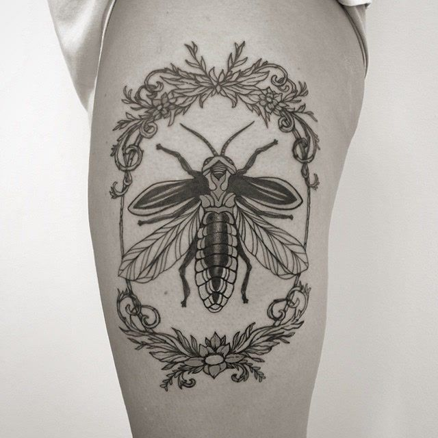 Laura Black Firefly Tattoo: Started This Firefly On My Wife Last Night. Work In
