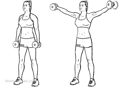 Резултат со слика за 2. Side shoulder dumbbell raises