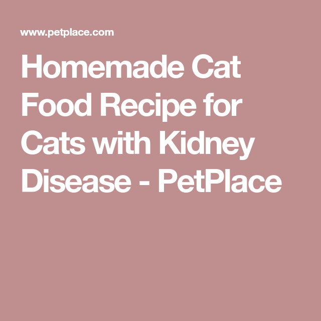 Homemade Cat Food Recipe for Cats with Kidney Disease - PetPlace Low Protein Dog Food,