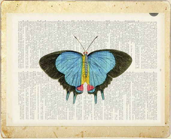 butterfly - vintage blue pink butterfly printed on old dictionary page via Etsy
