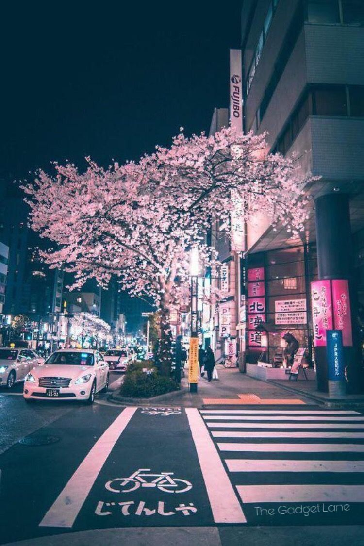 Street City Travel Wallpaper Japan Photography Aesthetic Japan Japan Travel