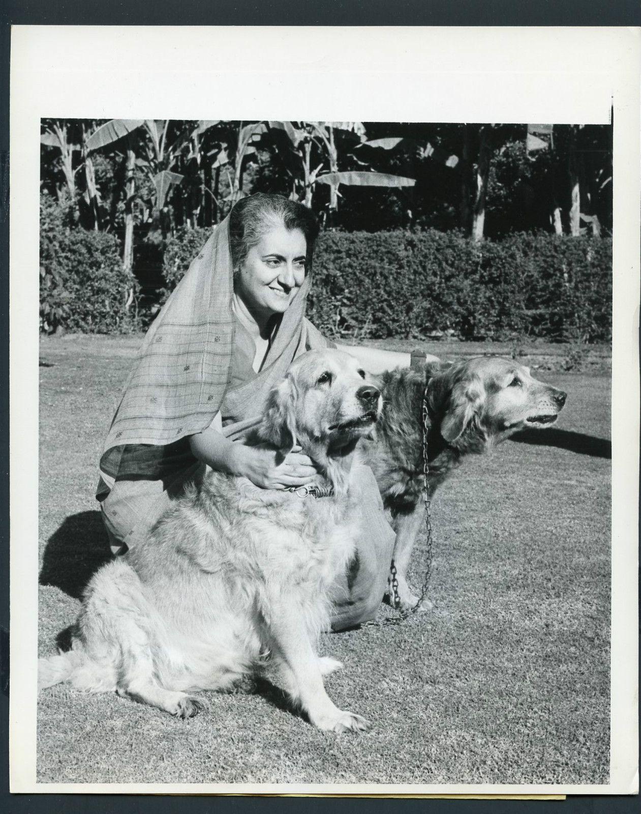 Indira Gandhi With Golden Retrievers Google Search Dog
