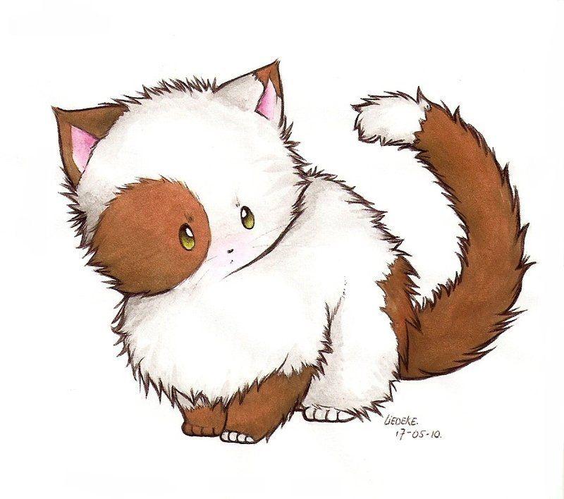Самые милые картинки котиков для срисовки, открытки возвращением домой