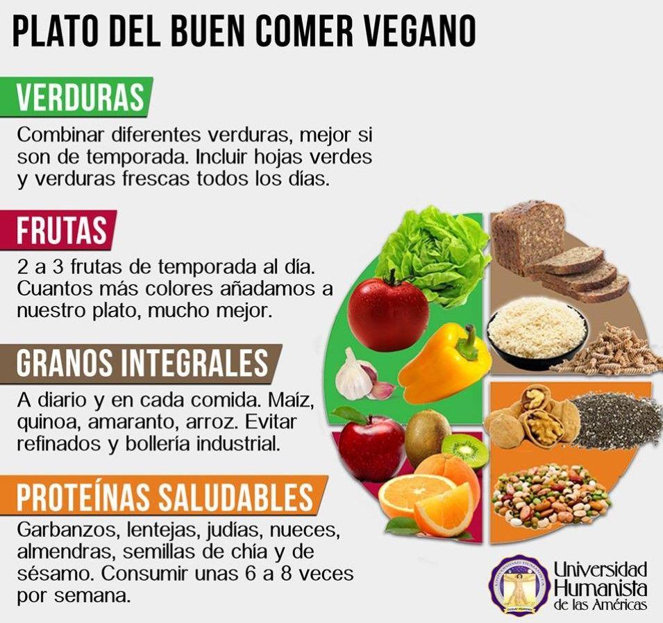 Explicacion Del Plato Del Buen Comer Plato Del Buen Comer Plato Del Bien Comer Alimentos Para Hipotiroidismo