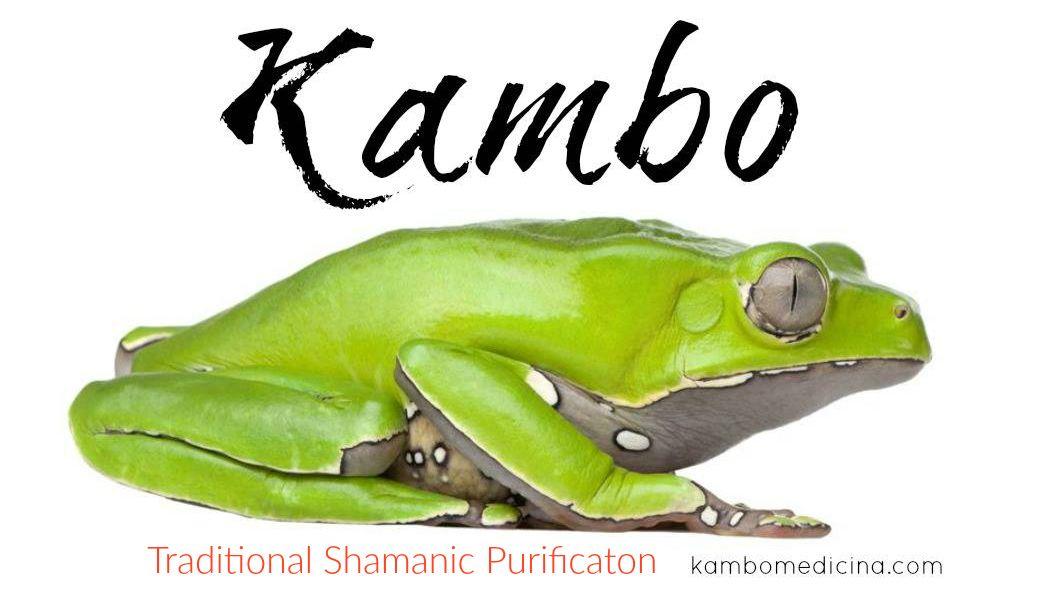Traditional Shamanic Kambo Cleanse Frog Shaman Sacred Plant