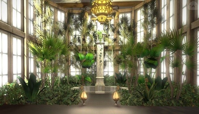 Most Beautiful Indoor Plants