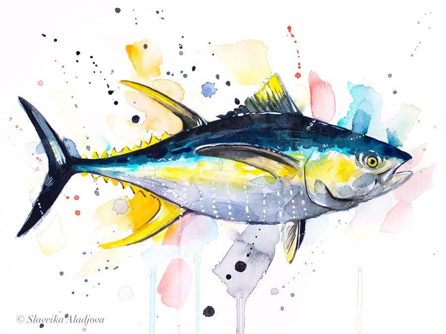Yellowfin Tuna Watercolor Painting Print By Slaveika Aladjova Art