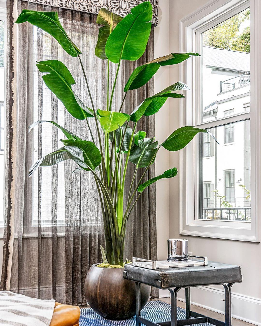 Best Atlanta Interior Designer Interior design ideas