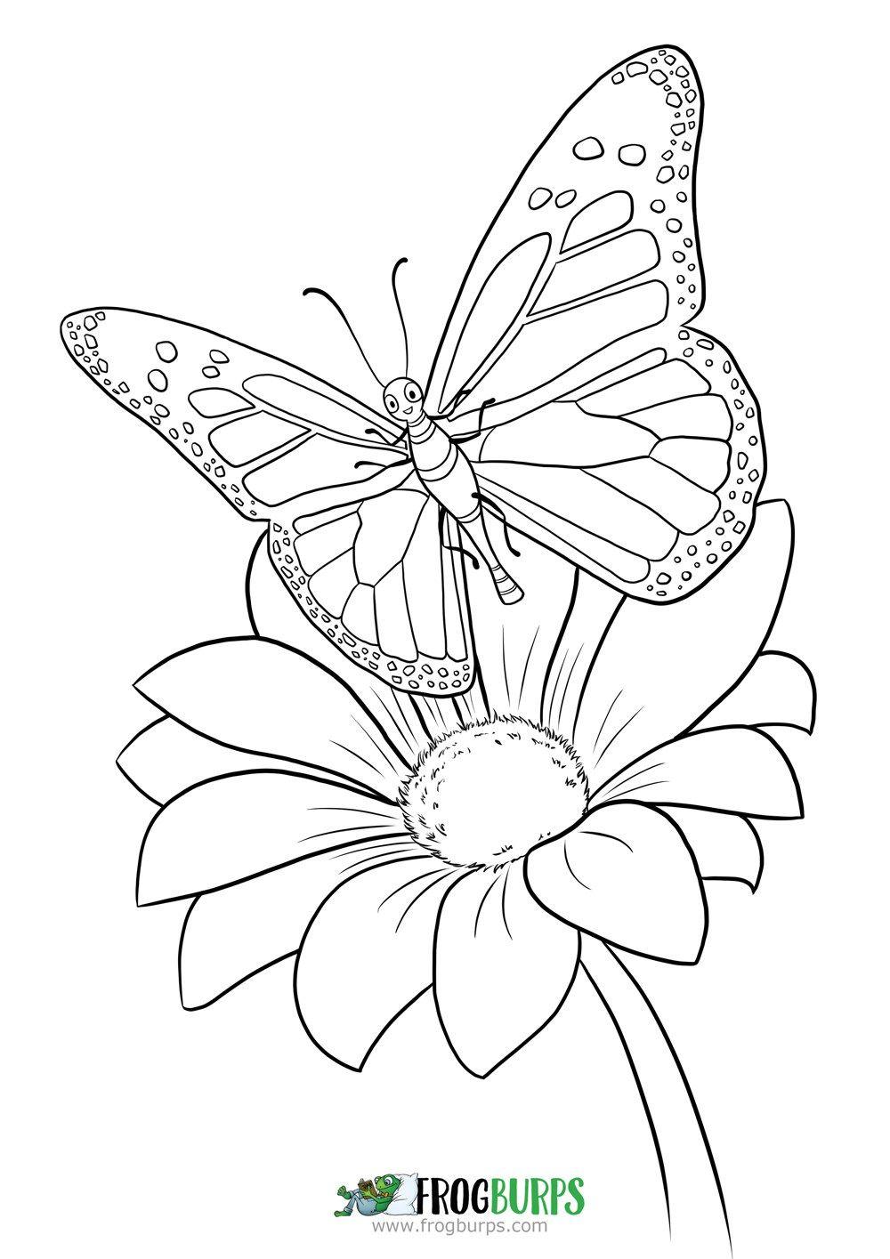 Butterfly Coloring Page Butterfly Coloring Page Coloring Pages Flower Coloring Pages [ 1415 x 1000 Pixel ]