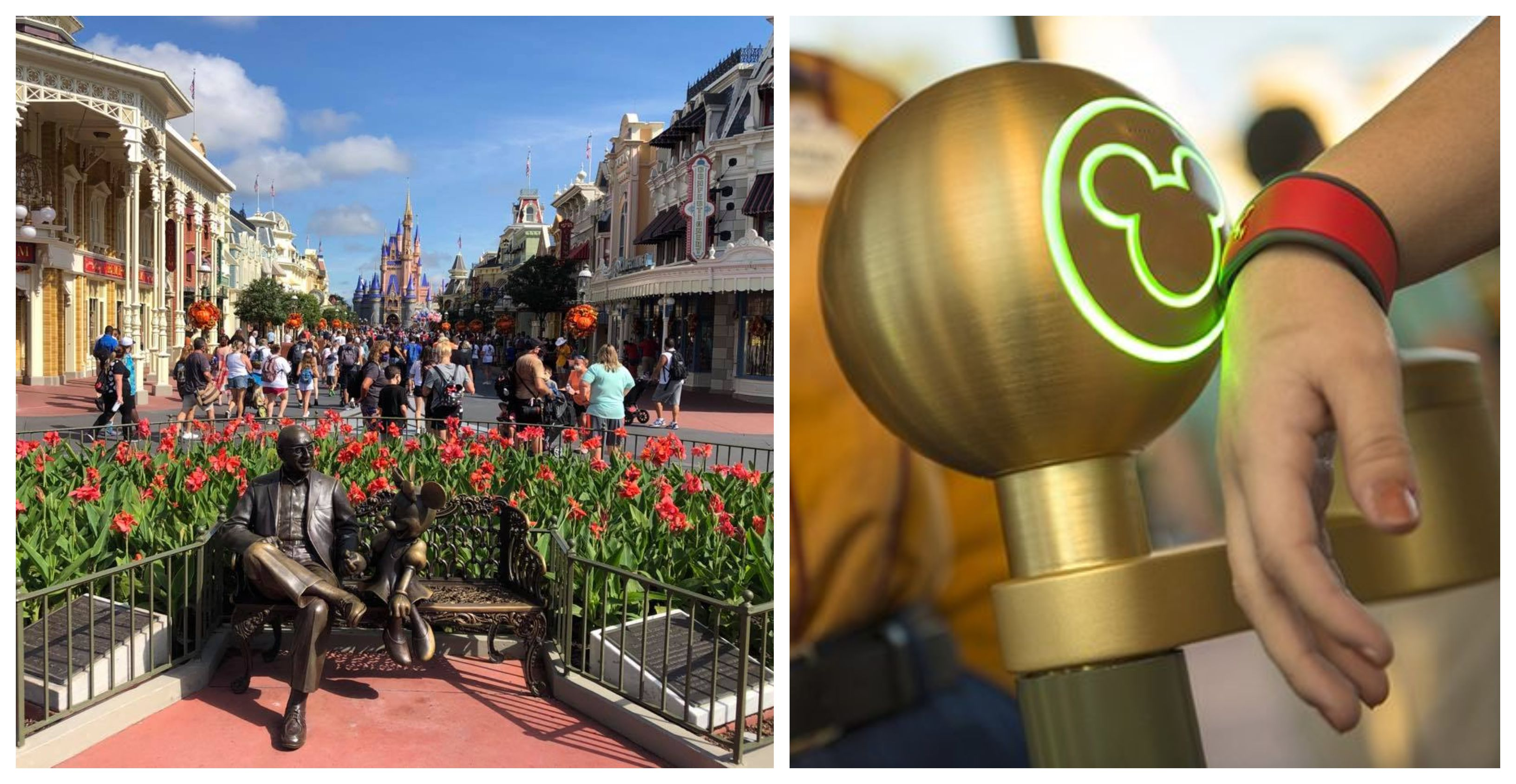 While we receive compensation when you click links to partners, they do not influence our content. Disney Announces They Will Replace Extra Magic Hours | Chip and Company in 2021 | Magic hour ...
