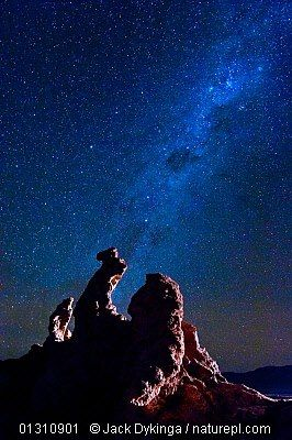 Night Sky over Chile