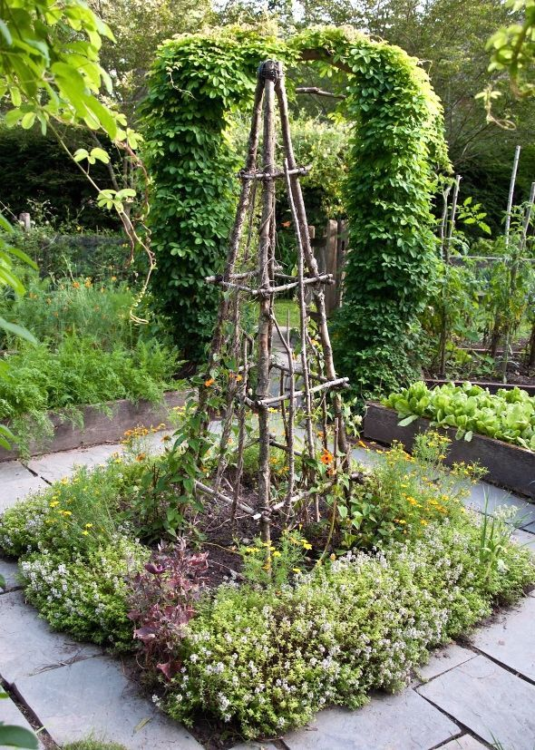 natural trellis ideas - Bing Images | garden trellis and fence ideas ...