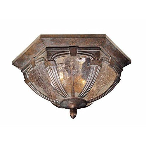 "Vaxcel OF38713 Essex 13"" Outdoor Flush Mount finish: Royal Bronze Vaxcel http://www.amazon.com/dp/B0038AHCNC/ref=cm_sw_r_pi_dp_HZSsvb18C0QN1"