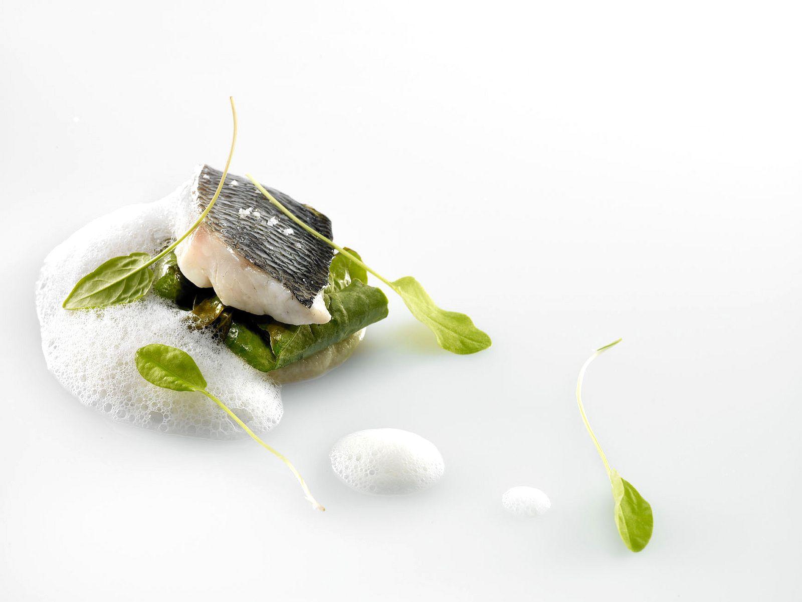 35dbd53315fdd0bc23d37e1912f379c9 - Ricette Gourmet