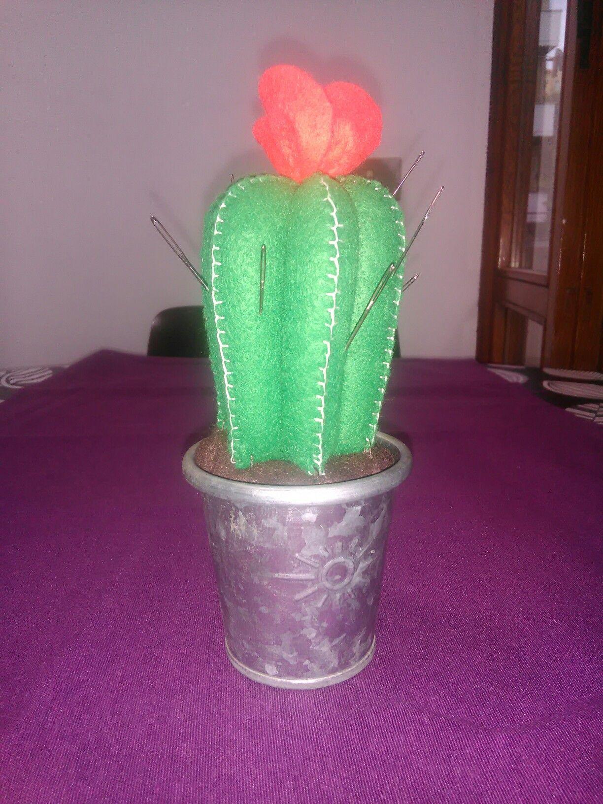 Puntaspilli cactus