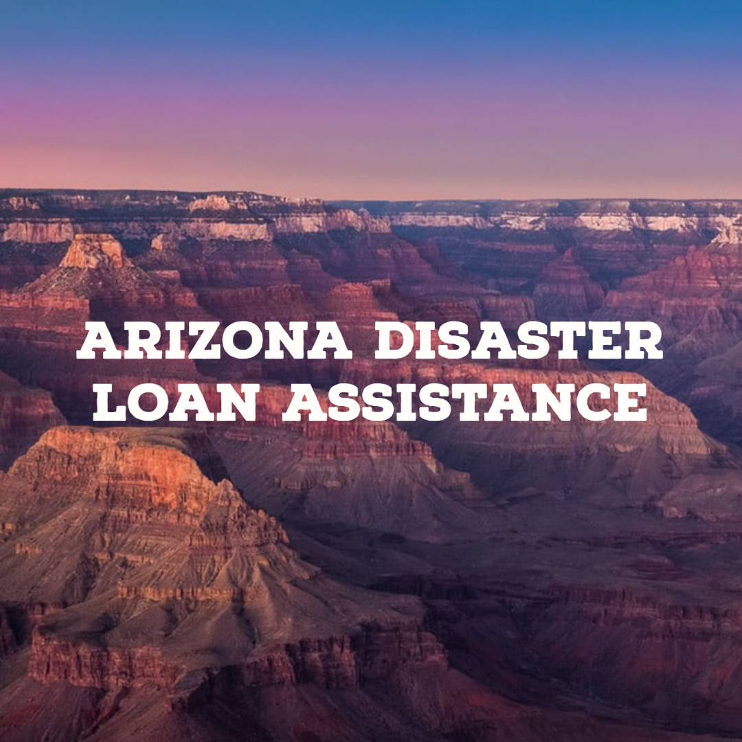 Arizona Disaster Loan Assistance In 2020 Personal Financial Statement Sba Relief