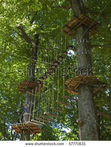 CLIMBING TREE: adventure playground in the trees. by Dirk Ott, via ShutterStock