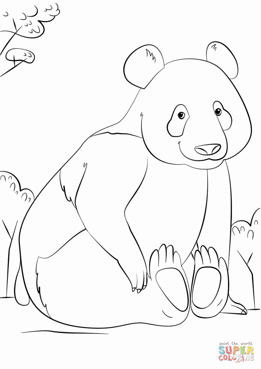 Baby Red Panda Coloring Page Panda Coloring Pages Panda Sketch Panda Drawing