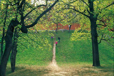 Pin By Y F C On Daisaku Ikeda S Photography Essay Contests School Essay Green Environment