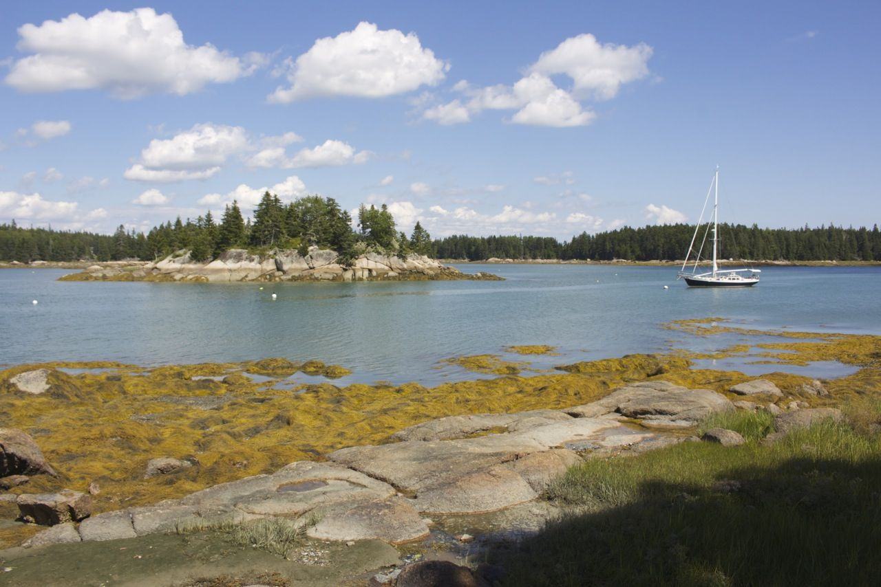 9 oceanside trails to try in maine this spring spring