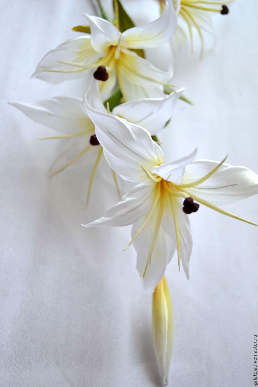 Цветок стрелка с белыми цветами