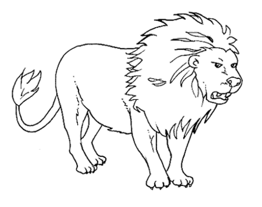 wild animals coloring pages free printable download - Picture Of Animals To Color