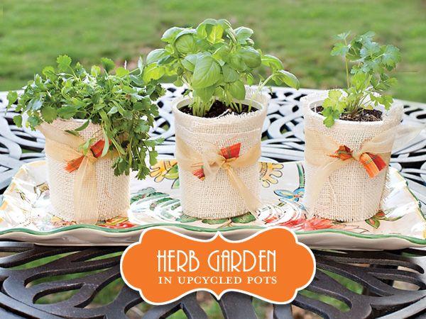 DIY Tutorial: Upcycled Mini Herb Garden | Herbs garden, Herbs and ...