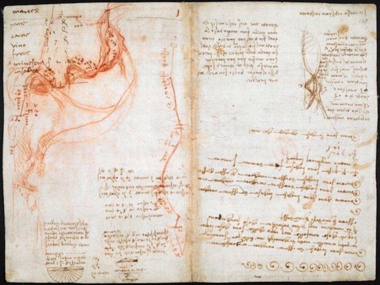 Leonardo Da Vinci Notebook Online Thanks To The British Library Leonardo Da Vinci Leonardo British Library