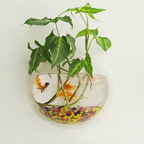 Outgeek Wall Fish Bubble Wall Hanging Bowl Clear Acrylic Vase Flower