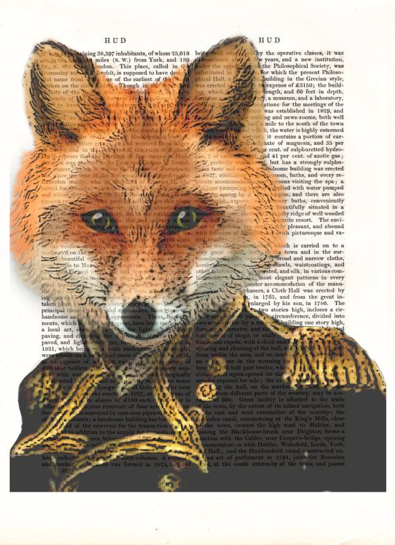 Admiral Fox Portrait  Art Print Acrylic Painting by FabFunky, $18.00