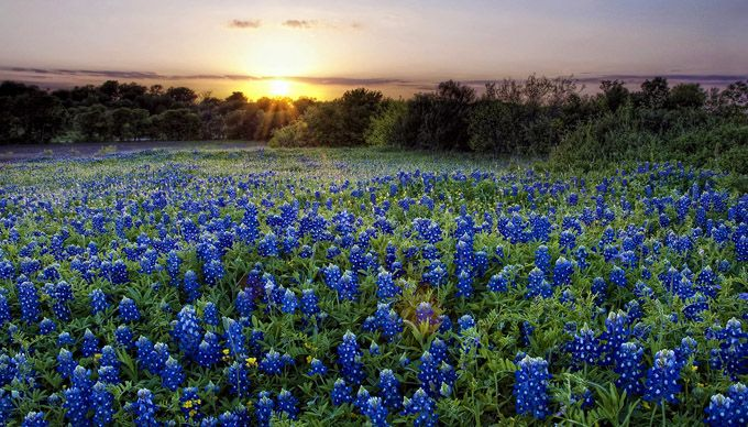 10 Things to See and Do in the Highland Lakes