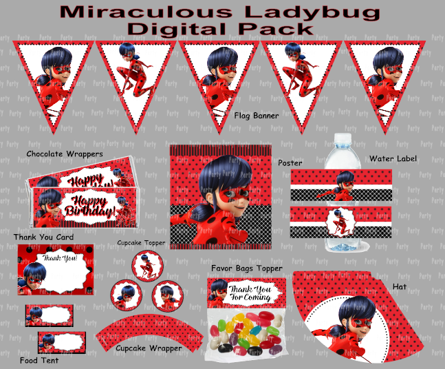 Invitations Gopartyfiesta Miraculous Ladybug Party Ladybug Birthday Party Ladybug Birthday Decorations
